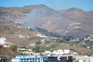 Imagen del incendio, próximo a la A-7 y a algunas viviendas.