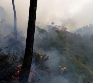 Personal del Infoca actúa en el incendio.