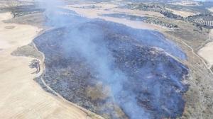 Zona afectada por el fuego, en el paraje Loma Larga.