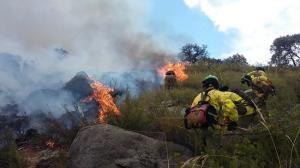 El paraje en el que se ha declarado el incendio es el Cerro del Asno.