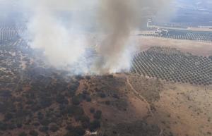 Imagen aérea de la zona del incendio declarado en Loja.