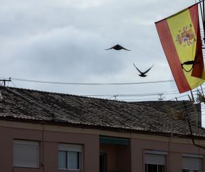 Bandera de España con un lazo negro en señal de luto.