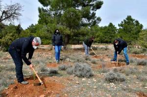 Plantación de árboles y arbustos en el paraje Santaolalla de la Sierra de Baza.