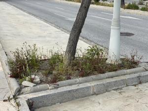Los vecinos denuncian el abandono del entorno.