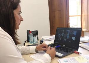 María José Sánchez, en reunión telemática con los ayuntamientos.