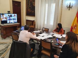Reunión telemática en la que han participado administraciones, Endesa y fuerzas de seguridad.