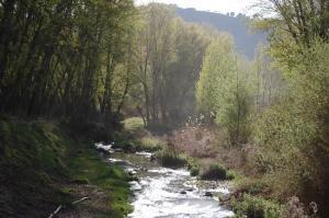 Tramo del río Genil.