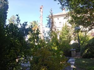 Un operario, trabaja este domingo en la tala de un gran pino en los jardines del Hospital Real.
