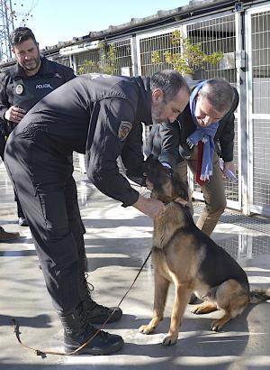 Stan Lee junto a uno de los agentes veteranos de la Unidad Canina y el concejal César Díaz.