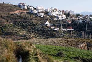 Víznar registra niveles de ozono de los más altos de España, dice Ecologistas en Acción.