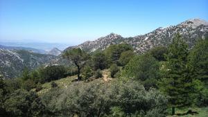 Zona de Huenes, en Sierra Nevada, término de Monachil.