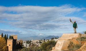 Un halcón, listo para sobrevolar la Alhambra.