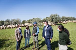 El pastor José Jiménez, en el centro, habla con responsables de Alhambra y Junta, y al fondo sus ovejas.