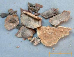 Restos de plomo carbonatado y yeso procedentes de la urna fúnebre revueltos con los huesos de Cristóbal Colón.