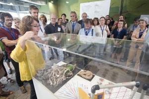 La muestra refleja la contribución del público al avance científico y el cambio social.
