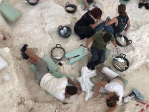 Tareas de investigación arqueológica.