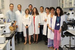 Equipo científico del trabajo, liderado por José Antonio Lorente (segundo por la izqda.).
