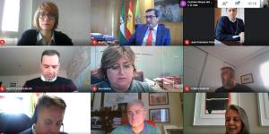 Reunión telemática del Geoparque.