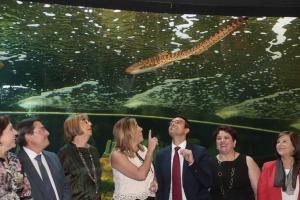 Susana Díaz y el resto de autoridades aprecian uno de los acuarios del Biodomo.