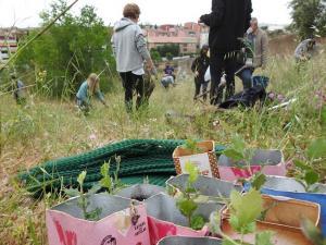Imagen de la plantación organizada por  'Fridays for Future'.