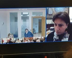 Imagen de la reunión, vía digital, de coordinación.