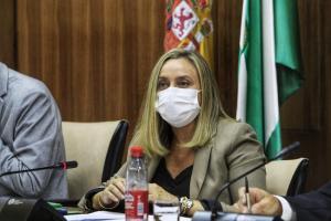 Marifrán Carazo, en la comisión de Fomento.
