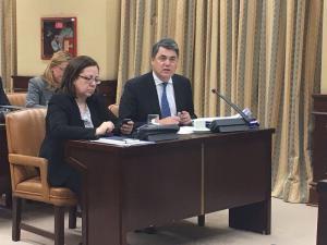 Carlos Rojas en una comisión en el Congreso.