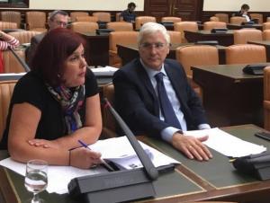 Elvira Ramón, en una comisión parlamentaria.