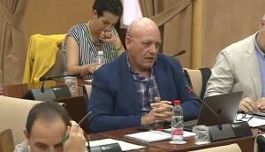 Gerardo Sánchez, en la comisión parlamentaria de este miércoles.
