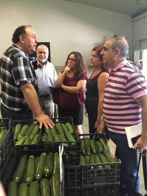 Los representantes del PSOE se han entrevistado con responsables de comercializadoras de hortalizas.
