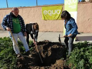 Miembros de Equo, durante la plantación de árboles este domingo.