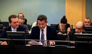 Luis Salvador en una comisión parlamentaria.