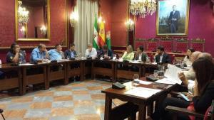 Un momento de la reunión celebrada este lunes en el Ayuntamiento de Granada.