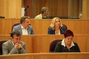 La nueva diputada provincial interviene en el pleno.
