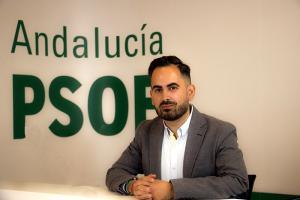 Raúl Ruiz, portavoz del PSOE en Lanjarón.