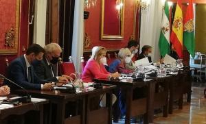 Luis Salvador y José Antonio Huertas, a la izquierda de la imagen, en el pleno de este viernes.