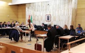 Imagen de una de las sesiones del juicio.