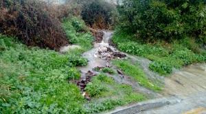 El agua inunda la vía pública.