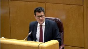 Alejandro Zubeldia, este lunes en el Senado.