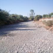 Nos habíamos acostumbrado a ver el río Dílar así, como una rambla, a su paso por la Vega.